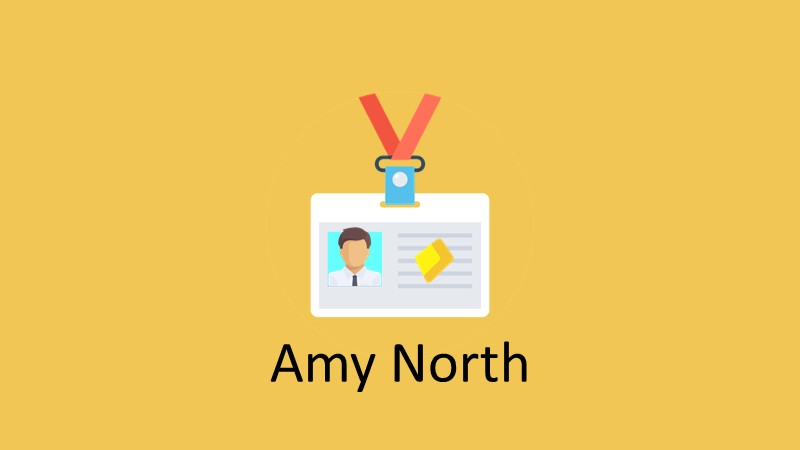 Guide Text Chemistry Amy North   It works? It's good? Worth it?
